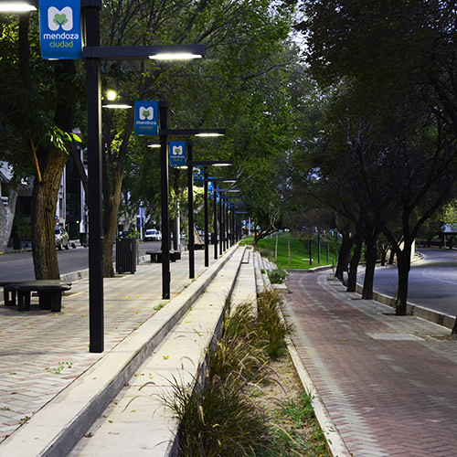 Read more about the article Paseo Pedro Molina